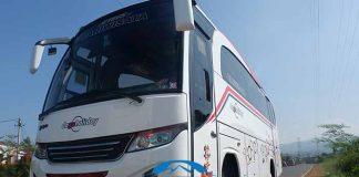 Daftar Harga Sewa Bus Pariwisata di Batang Terbaru