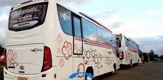 Daftar Harga Sewa Bus Pariwisata di Blora Terbaru