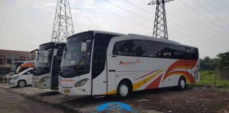 Daftar Harga Sewa Bus Pariwisata di Salatiga Terbaru