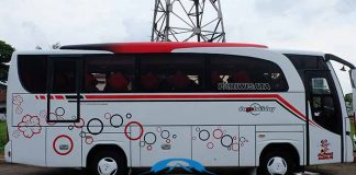 Daftar Harga Sewa Bus Pariwisata di Situbondo Terbaru